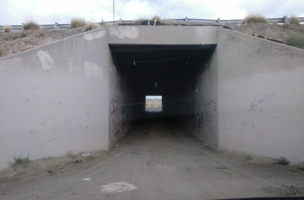 Tunnel west of ABQ by Buzze A. Long