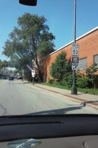 The Signage for Route 66 in Illinois Is Easy To Follow