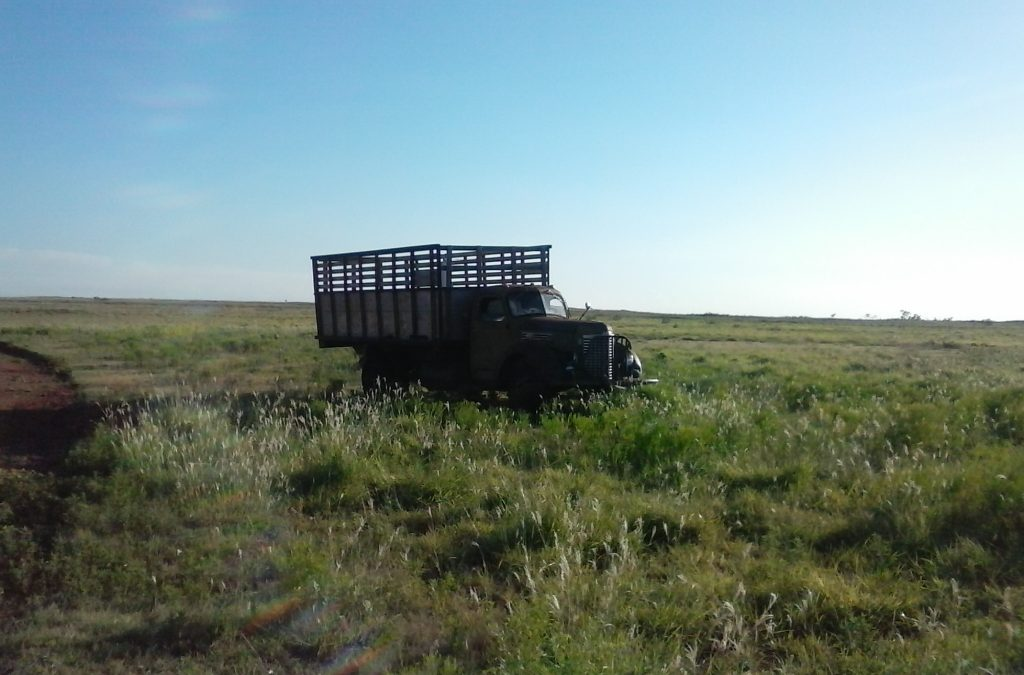 Truck in Shamrock, TX