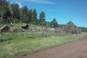 Williams, AZ Ranch