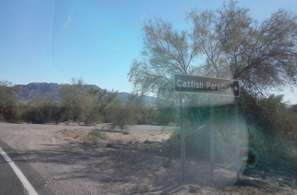 Catfish Paradise, Arizona